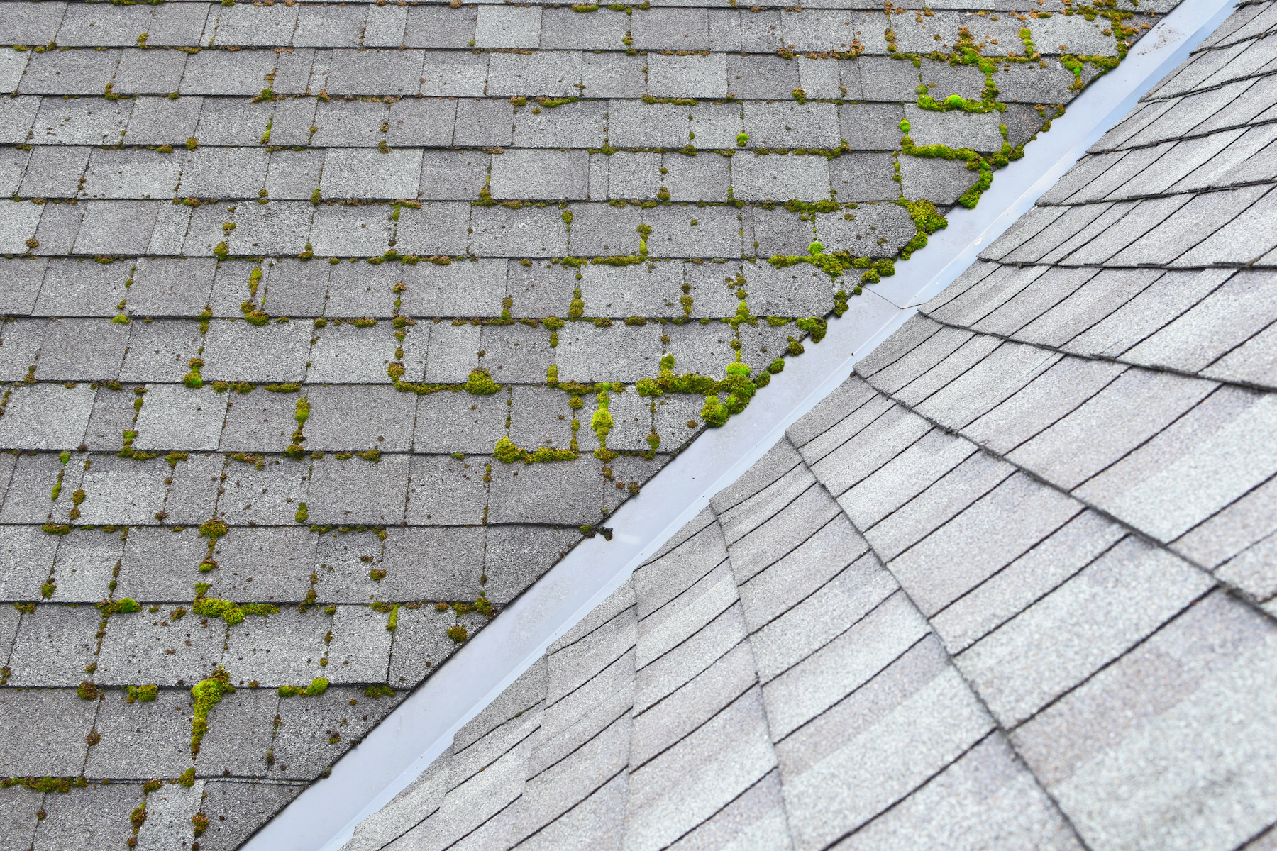 Rochester Hills roof cleaning near me